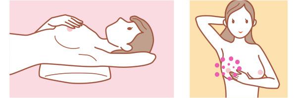 pink_utsuwa_3